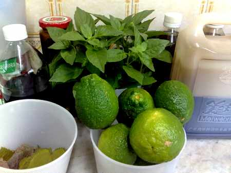 lemons detox