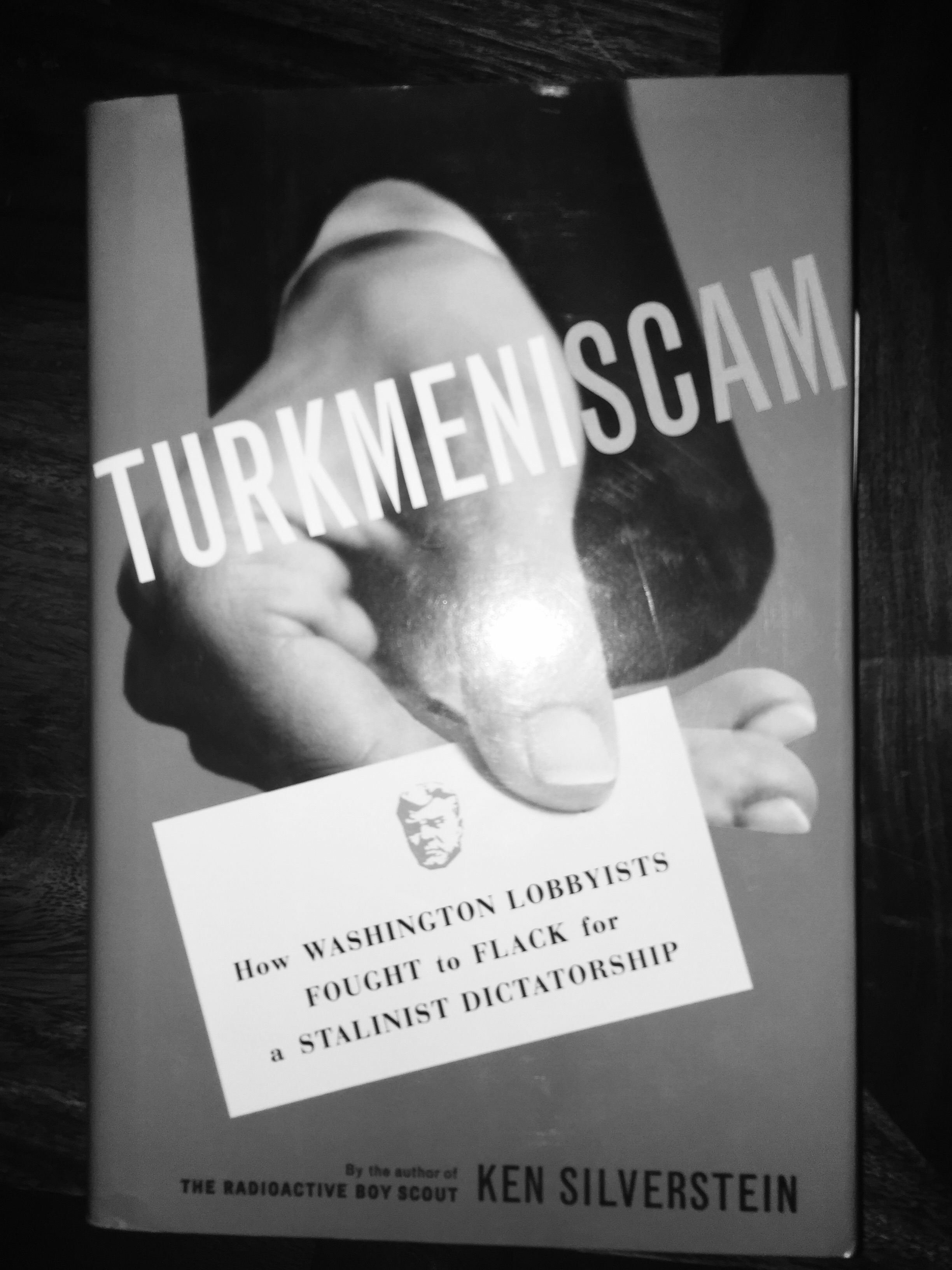 Book cover Turkminiscam How Washington Lobbyists Sought to Flack for a Stalinist Dictatorship