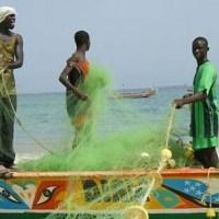 Sénégal : la Cour des comptes préconise la délocalisation du port de pêche de Dakar
