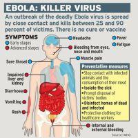 Sénégal: La flambée de maladie à virus Ebola est terminée