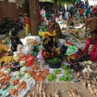 REPORTAGE au Nord du Sénégal: Le Calvaire Des Commerçantes de la Commune de Dodel