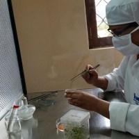 Message à diffuser : recherchons femmes de sciences (pour nourrir le monde)