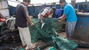 Pêche illégale en Afrique de l'Ouest