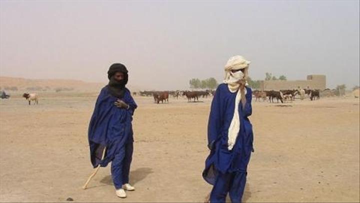 Les peuls du Niger