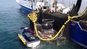 opération albacore contre la pêche illégale