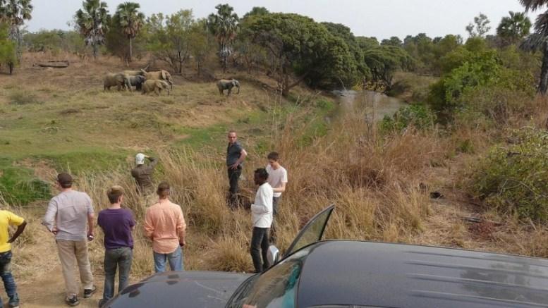 Des recherches au parc de la Pendjari