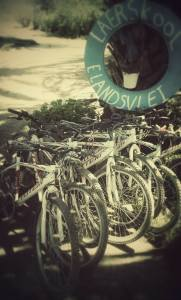 Pedal for Peace bikes donated to Elandsvlei School