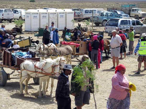 padstal-gathering-donkey-day