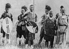 bambatha-warriors5b15d
