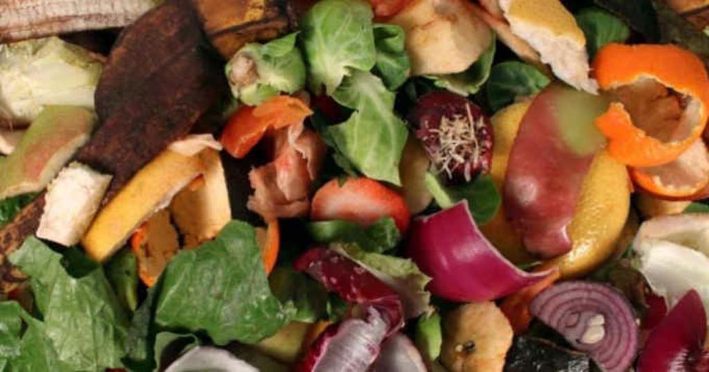 déchets légumes