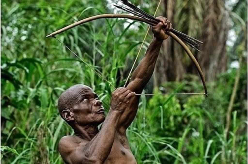 pygmées tués  RDC