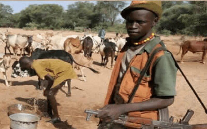 Many missing as herdsmen strike, burn down villages in Benue
