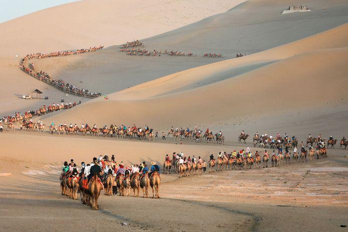 Traffic jams in the desert for romantic camel ride