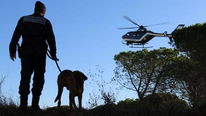 A two-day search does not produce anything, the tracking dog finds the man alive after 45 minutes