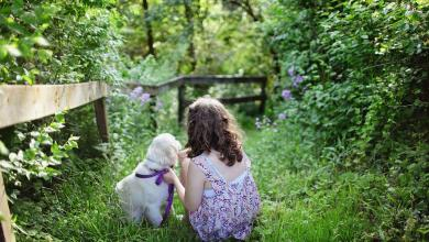 Those who spend time in their garden are healthier – study reveals