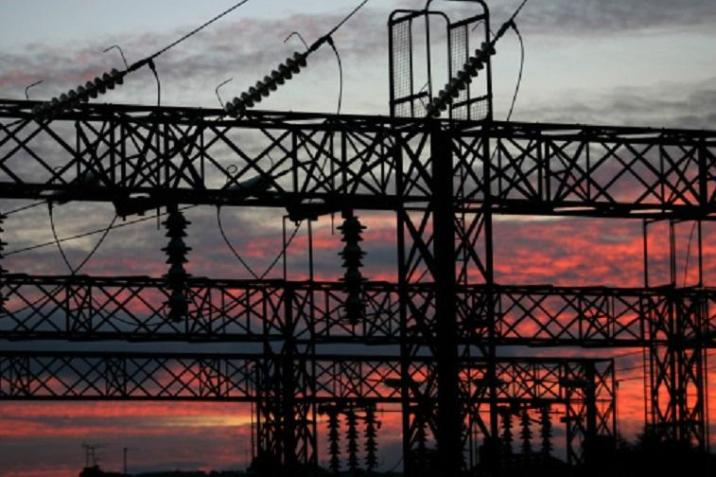 Monkey caused nation's power outage
