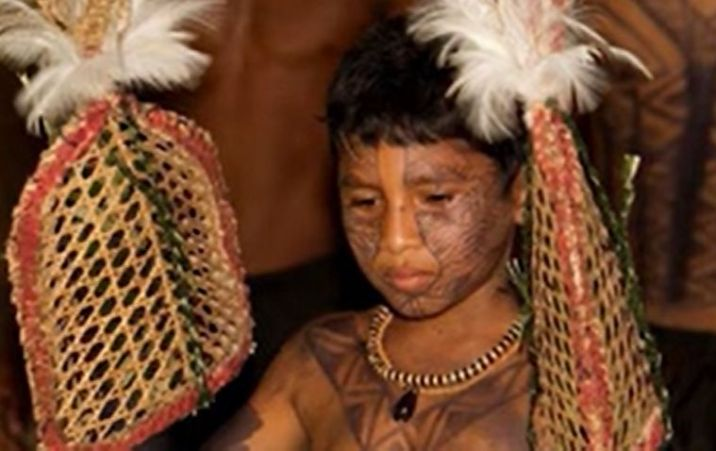 What to know about the tribal ritual of Bullet Ant Glove