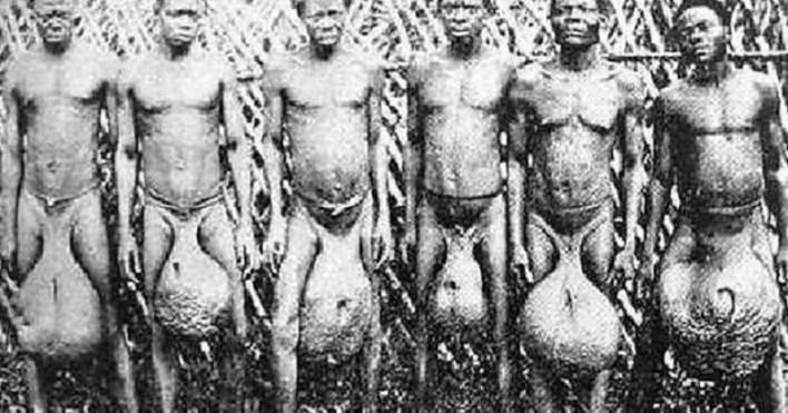 Bubal tribe