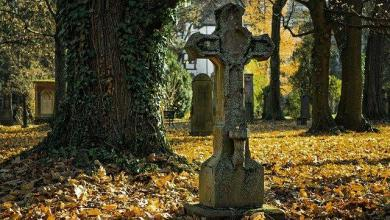 What is death like? Theories scientists are trying to figure out