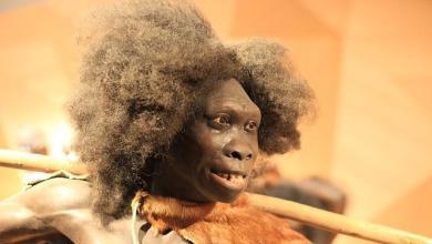 Neanderthal African origins: Study identifies the ancestry in Africa
