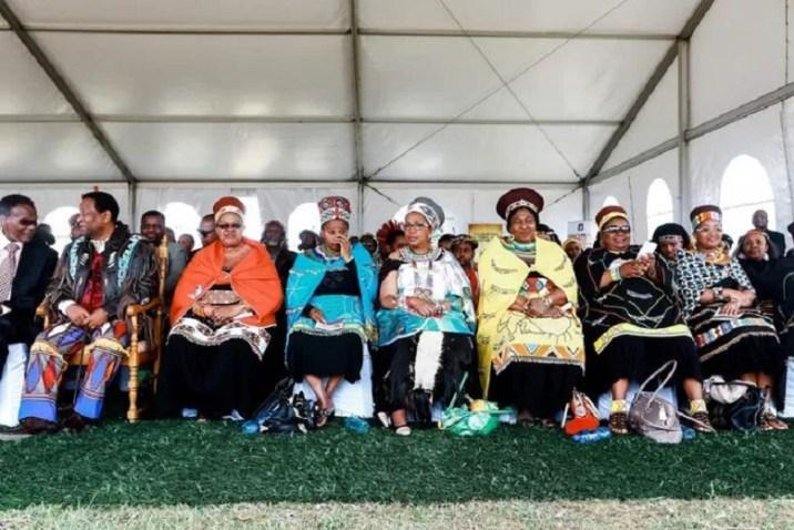 The six wives of the late King Goodwill Zwelithini (second from left): Sibongile Dlamini, Buhle Mathe, Mantfombi Dlamini, Thandekile Ndlovu, Nompumelelo Mamchiza and Zola Mafu in 2013