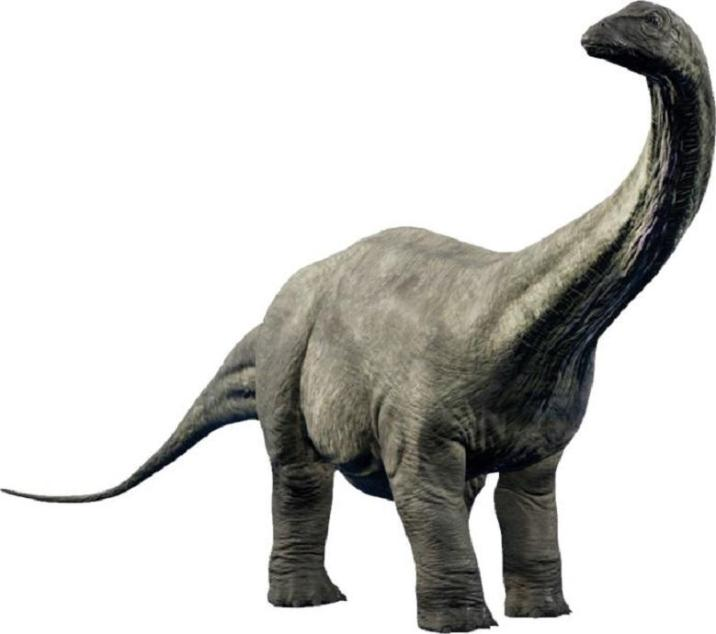 Giant animals in the history of the earth