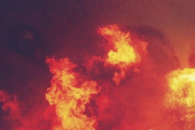 Four dead in forest fires in Algeria - images