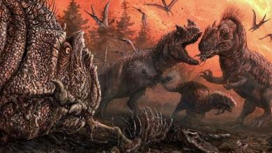 Dinosaurs turned into cannibals when hungry