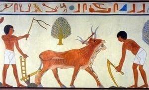 HOMME AFRICAIN AVEC DIEU - EGYPTE ANTIQUE