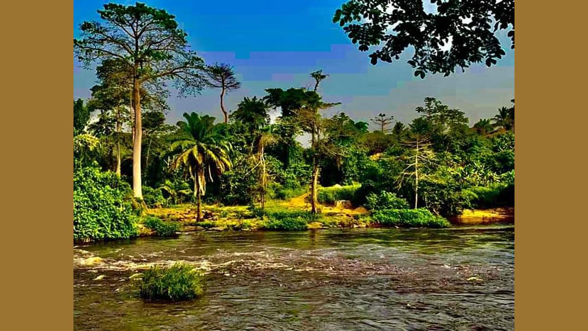 Le fleuve Bia d'Aboisso – Découverte en Côte d'Ivoire