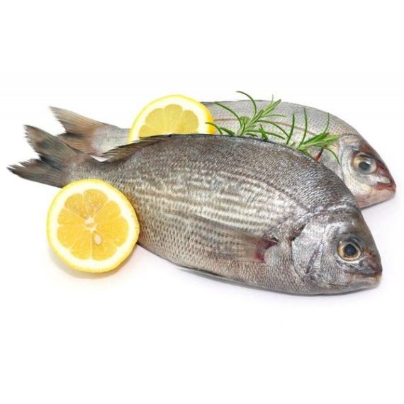 poisson dorade grise