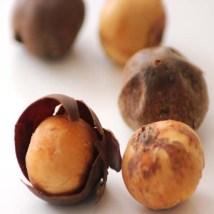 Rondelles ou Olum ou Bobimbi ou Country-Onions ou Huyomi...