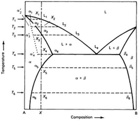 asm phase diagram label the ear anatomy diagrams fig 23 binary