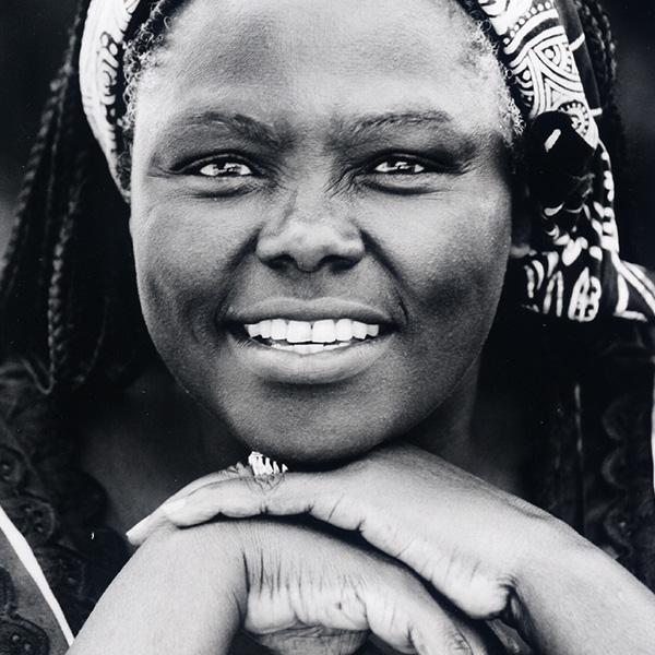 poema a Wangari Maa-Tai. Voces Afroféminas