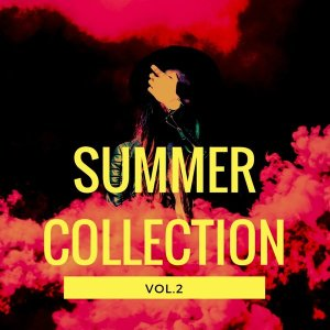 VA Summer Collection, Vol. 2 [OneBigFamily Records]