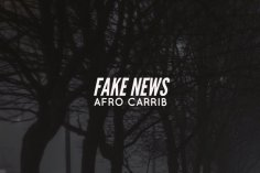 Afro Carrib - Fake News EP
