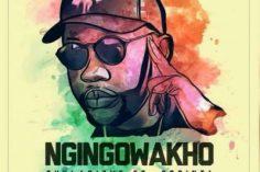 Thulasizwe feat. 2Point1 - Ngingowakho