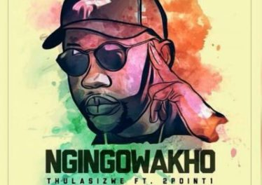 Thulasizwe feat. 2Point1 - Ngingowakho