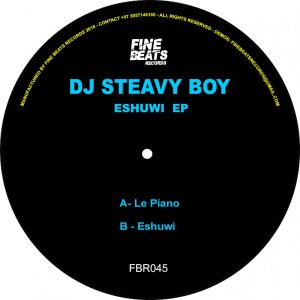 DJ Steavy Boy - Le Piano (Original Mix)