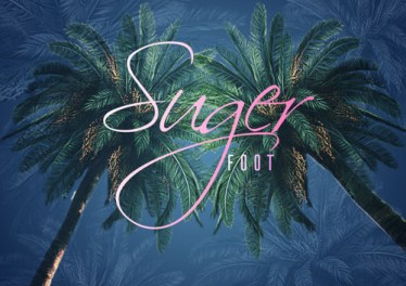 DJ Ace - Sugar Foot