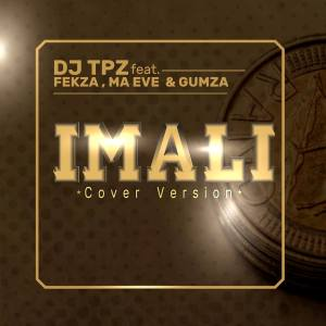 DJ TPZ feat. Fekza, Ma Eve & Gumza - Imali (Cover Version). mp3 download south african music