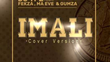 DJ TPZ feat. Fekza, Ma Eve & Gumza - Imali (Cover Version)