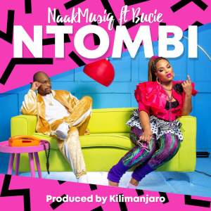 NaakMusiQ - Ntombi (feat. Bucie). South africa music, new south africa afro pop house music, mp3 download sa music