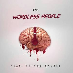 TNS feat. Prince Kaybee - Wordless People. new house music 2018, afro beat, datafilehost house music, mzansi house music downloads, south african deep house, latest south african house
