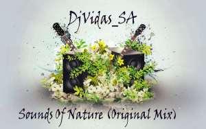 DjVidas SA - Sounds Of Nature (Original Mix)