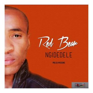 Red Bear - Ngidedele (Original Mix)