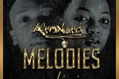 Afronerd - Melodies (feat. Lizwi) - afro tech house, afro house musica, afro beat, datafilehost house music, mzansi house music downloads, south african deep house, latest south african house, new house music 2018, best house music 2018, latest house music tracks
