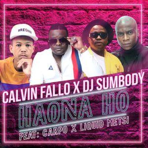 Calvin Fallo & DJ Sumbody - Haona Ho (feat. Liquid Metsi & Carpo). new house music 2018, best house music 2018, latest house music tracks, dance music, latest sa house music