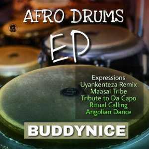Buddynice - Expressions (Original Mix)