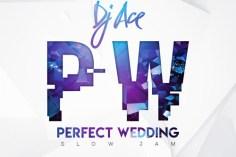 DJ Ace - Perfect Wedding